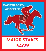 HORSE RACING ~ RACETRACK SITES & RACES